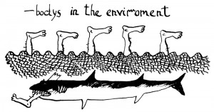 Bodies in the environment